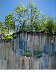 Orgues basaltiques et volcan de Montpeloux (nandOOnline) Tags: auvergne frankrijk lafougeraie landschap livradoisforez natuur orgues basaltiques volcandemontpeloux basalt orgelpijpen steen bomen krater vulkaan