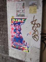 Smokin' Cats! (Flyposters, Trafalgar Street, Brighton) (The Lens of Lucid Frenzy) Tags: art graffiti streetart brighton posters