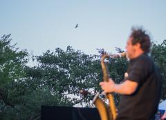 Sax | Madras Jazz festival 2017. (Vijayaraj PS) Tags: music streetphotography indianstreetphotography artists backstage candid india asia tamilnadu southindia iamnikon performers people eventphotography performer onstage stage 2017 event nikon colours jazz jazzmusic band saxophone sax