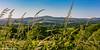 A Preseli View (PRPhoto dot Wales) Tags: canon eos pembrokeshire preseli bluesky blur ferns fields flowers grass hazel hedge hills honeysuckle nothdr photograph preselis