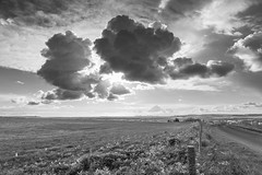 Stormy Clouds 4 (stevedewey2000) Tags: sonyrx10 cloudscape skyscape landscape wiltshire salisburyplain cumulus showerclouds showers clouds cloud rainclouds stormy storm blackandwhite bw desaturated monochrome 32 pewsey valeofpewsey pewseydown explore explored