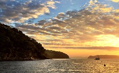 Early morning. The Basin. Pittwater.