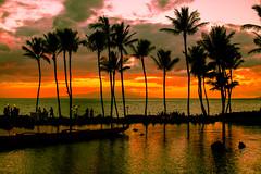 Take Me Somewhere Nice (Thomas Hawk) Tags: grandwailea hawaii maui wailea waldorfastoria waldorfastoriagrandwailea beach clouds humuhumu humuhumunukunukuapuaa palmtree restaurant sunset tree fav10 fav25 fav50