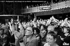 2017 Bosuil-Het publiek bij Hoodoo Monks en The Red Devils 16-ZW