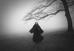 Wild Branches (Maren Klemp) Tags: fineartphotography darkart blackandwhite monochrome nature woman foggy tree contrast outdoors conceptual portrait selfportrait blackdress naturallight fairytale painterly dreamy ethereal evocative field