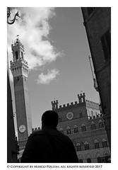 A look up (Pollini Photo Laboratory) Tags: marcopollini polliniphotolabcom fotografiaurbana streetphotography leica leicam8 summarit 35mm blackwhite bianconero monocrome siena italy