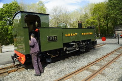 End of the line (gooey_lewy) Tags: vale rheidol railway vor steam narrow gauge train engine wales 2 ft feet 262t tank great western livery gwr british rail railways br green prince 9 1213 loco locomotive coal fired nice light picturesque devils bridge station