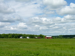 Grassland at Reed/Bryan Farm (Dendroica cerulea) Tags: grassland grass field farm landscape sky clouds spring reedbryanfarm polefarm mercermeadows lawrencetownship mercercounty nj newjersey