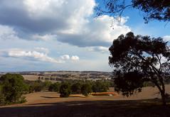 Afternoon idyll (LeelooDallas) Tags: western australia bannister landscape eucalyptus tree field farm bush sky cloud dana iwachow nikon s9200