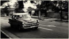 Almendrón cubano (Carpetovetón) Tags: auto automóvil car cars almendrón carro antiguo blancoynegro viñales bn blackwhite noiretblanc sonynex5n cuba monocromático monocromatic classicscars