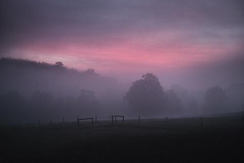 Before a dawn in June