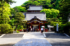 Tsuruoka Hachimangu Shrine : 鶴岡八幡宮 (Dakiny) Tags: 2017 spring may japan kanagawa kamakura city street outdoor landscape shrine architecture building tsuruokahachimangu people sky blue nikon d7000 sigma 1770mm f284 dc os hsm sigma1770mmf284dcmacrooshsm nikonclubit