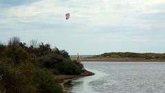 Le kitesurfer (brigeham34) Tags: balade printemps juin petitemaïre rivierette lagune dunes tamaris roseaux paysage plage kitesurf famille portiragnesplage hérault occitanie france eu fz45