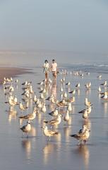 Aren't these lovebirds? (PMTN) Tags: beach praia pedronascimento canon seagulls gaivotas costadacaparica portugal birds pássaros couple casal pessoas people blue water água
