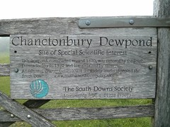 Devils Dyke to Chanctonbury Ring (Dominic's pics) Tags: dew pond south downs way