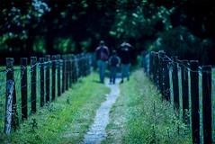 Clingendael (joeyjansen1) Tags: clingendael hague netherlands city garden nature