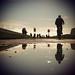 Reflexos / Reflections