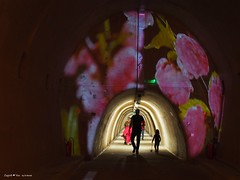 Floraart exhibition underground tunnel15