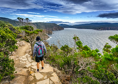 Looking towards Fortescue Bay (NettyA) Tags: 2017 3capestrack australia sonya7r tasmannationalpark tasmanpeninsula tasmania tassie threecapestrack bushwalk bushwalking day4 hike capehauytrack hiking cliffs track trail clouds sea seascape dolerite rocks fortescuebay bushwalker hiker path stone