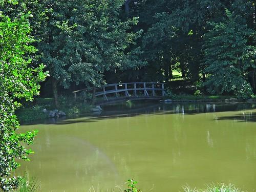 Rybník u Kopřivnice