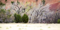 NATURE'S DAY DRESS (Irene2727) Tags: ghostranch georgiaokeeffee trees nature redrock landscape scape panorama pano newmexico abiquiu bushes deadtrees grass ree tree
