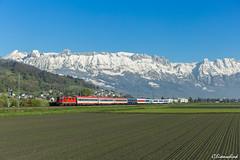 EN 414 im Rheintal (TheKnaeggebrot) Tags: sbb en euronight nachtzug nightjet en414 cff ffs re420 re44 re44ii sevelen rheintal