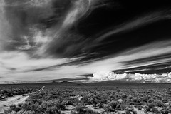 (el zopilote) Tags: 600 500 albuquerque newmexico westmesa landscape powerlines clouds canon eos 5dmarkii canonef24105mmf4lisusm canonites fullframe bw bn nb blancoynegro blackwhite noiretblanc digitalbw bndigital schwarzweiss monochrome