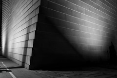 Night around the New Synagogue (alxfink) Tags: night architecture buidling wall storefront edge dresden synagogue bw blackwhite blackandwhite sw abstract street lumix