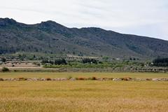 16052017-DSC_0210.jpg (stephan bc) Tags: landschap yecla