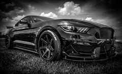 FIT_014 (Dave GRR) Tags: black white bw mustang ford auto show fitted toronto olympus omd em1 1240
