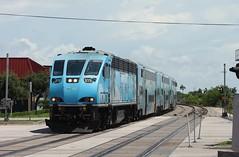 Palm Trees (brickbuilder711) Tags: csx trirail p671 q453 dania beach miami fort lauderdale florida train trains ac44cw brookville bl36ph railfan east coast station sfrc