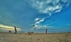 Excercise (badhri_2005) Tags: chennai beach thiruvanmiyur dogpractise energy exercise