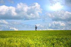 Horizon (JDAMI) Tags: antenne champ blé céréales vert ciel bleu nuages horizon printemps dury somme 80 picardie france lumière hautsdefrance nikon d600 tamron 2470