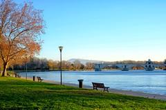 Rhône Morning #1 (A. Nothstine) Tags: avignon france provence rhone south winter christmas river morning pont davignon sunlight