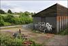 Eski, CTR, Atom... (Alex Ellison) Tags: eski lwi ctr atom northlondon trackside railway urban graffiti graff boobs london