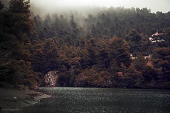 Limni Beletsi,Greece (Danai Fokiou) Tags: greece parnitha lake winter fog mist forest nature danaifokiou photography