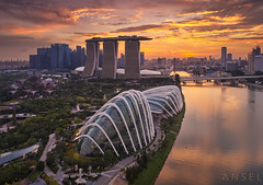 sunflower (draken413o) Tags: singapore architecture cityscapes skyline skyscrapers urban places scenes asia travel destinations gardens by bay flower dome cloud forest epic sunset dji aerial drone phantom 4 pro vertorama wow marina sands