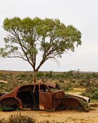Broken... (ImagesByLin) Tags: australia brokenhill aged car desert landscape rusty tree vehicle australian outback broken