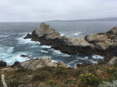 Point Lobos (Hailey NM) Tags: cliffs westcoast nature pointlobos california