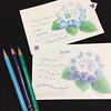2017_06_08_hydrangea_02 (blue_belta) Tags: coloredpencil drawing hydrangea