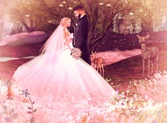 Osmen & Pinkky (lolitanovo) Tags: wedding love animals forest married marriage romantic beautiful light sl mesh second secondlife life catwa 3d avi avatar art maitreya elegant couple united