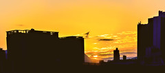silhouettes (kcma17) Tags: sunset beach water sky blue red art fantastic marvelous intriguing fantastical beautiful clever subtle fine wonderful brilliant excellent splendid amazing remarkable landscape night
