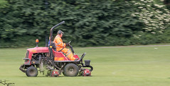Speed Mowing (Wayne Cappleman (Haywain Photography)) Tags: haywain photography wayne cappleman farnborough hampshire king george fifth park
