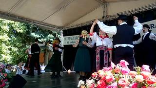 Folk dance group
