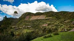 Sacred Valley -_DSC0732 (dave minkel photography) Tags: peru inca sacredvalley andes urubambavalley