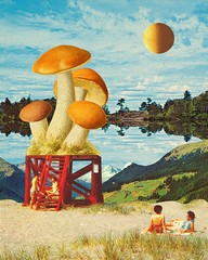 Fungi day (Mariano Peccinetti Collage Art) Tags: cutandpaste globular collage surreal collageartist peccinetti marianopeccinetti dream meditation retro arte psych art psychedelic flowers vintage vintageart trippy 70s 60s lsd dmt surrealist surrealism space fullmoon moon cosmic camp saturn rainbow yoga desert lovers world love stars sun planets planet jupiter fungi pink vaporwave vapor kid luminous child