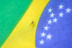 Brasil I (ruimc77) Tags: nikon d700 sigma 105mm f28 ex dg os hsm 11 macro brasil brazil bresil life vida inseto mosca fly mosco insecto insect color colour cor cores colores colorful closeup inceto bandera bandeira flag