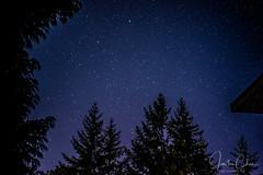 Star Gazing in Salt Spring Island (Justun Chan) Tags: star gazing night trees silhouette moon forest salt spring island vancouver airbnb justun chan