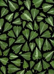 58291.01 Lamium maculatum (horticultural art) Tags: horticulturalart lamiummaculatum lamium cutleaves triangles pattern mosaic deadnettle