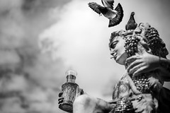 Bacchus on vacation (AlphaAndi) Tags: monochrome mono urban city brunnen fountain sony zeiss sculpture skulptur trier tiefenschärfe dof
